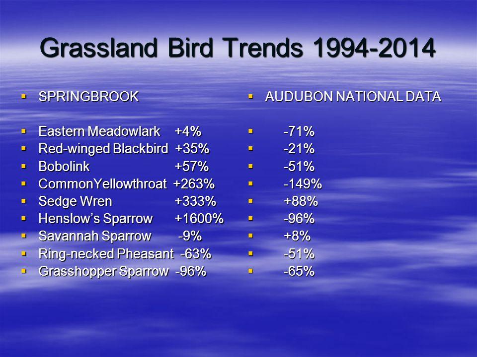 Grassland Bird Trends 1994-2014  SPRINGBROOK  Eastern Meadowlark +4%  Red-winged Blackbird +35%  Bobolink +57%  CommonYellowthroat +263%  Sedge Wren +333%  Henslow's Sparrow +1600%  Savannah Sparrow -9%  Ring-necked Pheasant -63%  Grasshopper Sparrow -96%  AUDUBON NATIONAL DATA  -71%  -21%  -51%  -149%  +88%  -96%  +8%  -51%  -65%