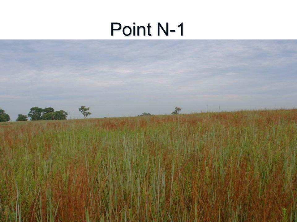 Point N-1