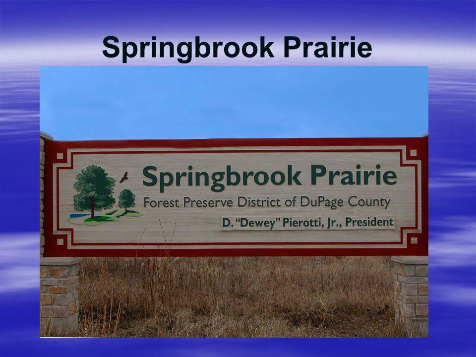 Springbrook Prairie