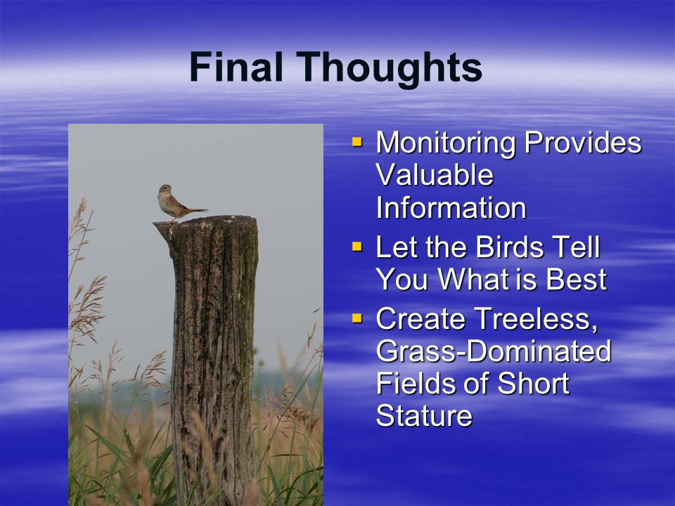 Final Thoughts  Monitoring Provides Valuable Information  Let the Birds Tell You What is Best  Create Treeless, Grass-Dominated Fields of Short Sta