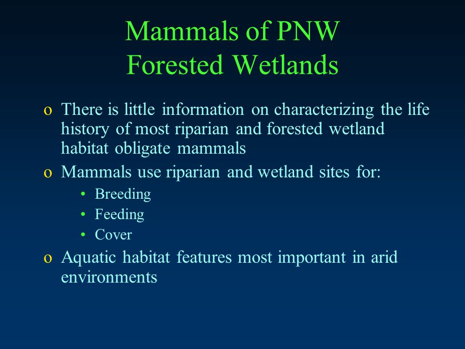 Mammals of PNW Forested Wetlands oThere is little information on characterizing the life history of most riparian and forested wetland habitat obligate mammals oMammals use riparian and wetland sites for: Breeding Feeding Cover oAquatic habitat features most important in arid environments