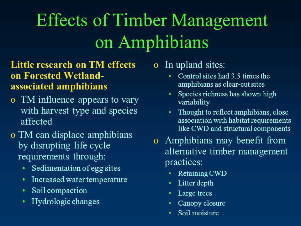 Effects of Timber Management on Amphibians Little research on TM effects on Forested Wetland- associated amphibians o TM influence appears to vary with harvest type and species affected o TM can displace amphibians by disrupting life cycle requirements through: Sedimentation of egg sites Increased water temperature Soil compaction Hydrologic changes oIn upland sites: Control sites had 3.5 times the amphibians as clear-cut sites Species richness has shown high variability Thought to reflect amphibians, close association with habitat requirements like CWD and structural components oAmphibians may benefit from alternative timber management practices: Retaining CWD Litter depth Large trees Canopy closure Soil moisture