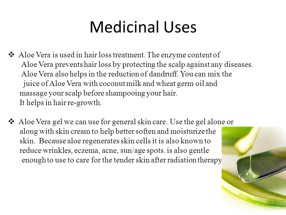 Medicinal Uses  Aloe Vera is used in hair loss treatment. The enzyme content of Aloe Vera prevents hair loss by protecting the scalp against any dise