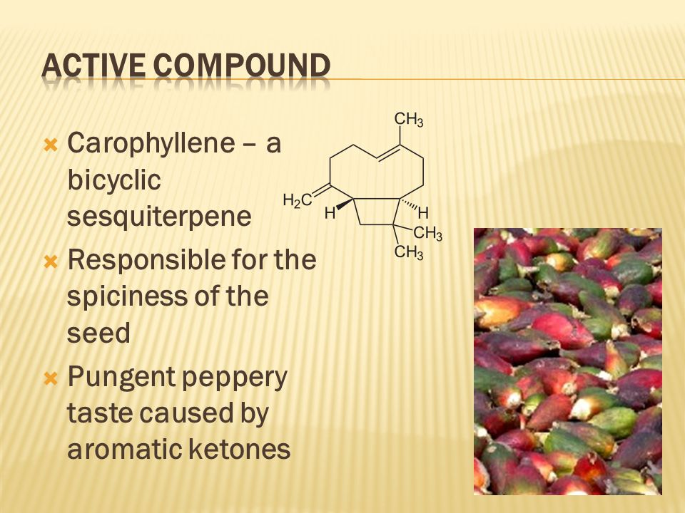  Carophyllene – a bicyclic sesquiterpene  Responsible for the spiciness of the seed  Pungent peppery taste caused by aromatic ketones
