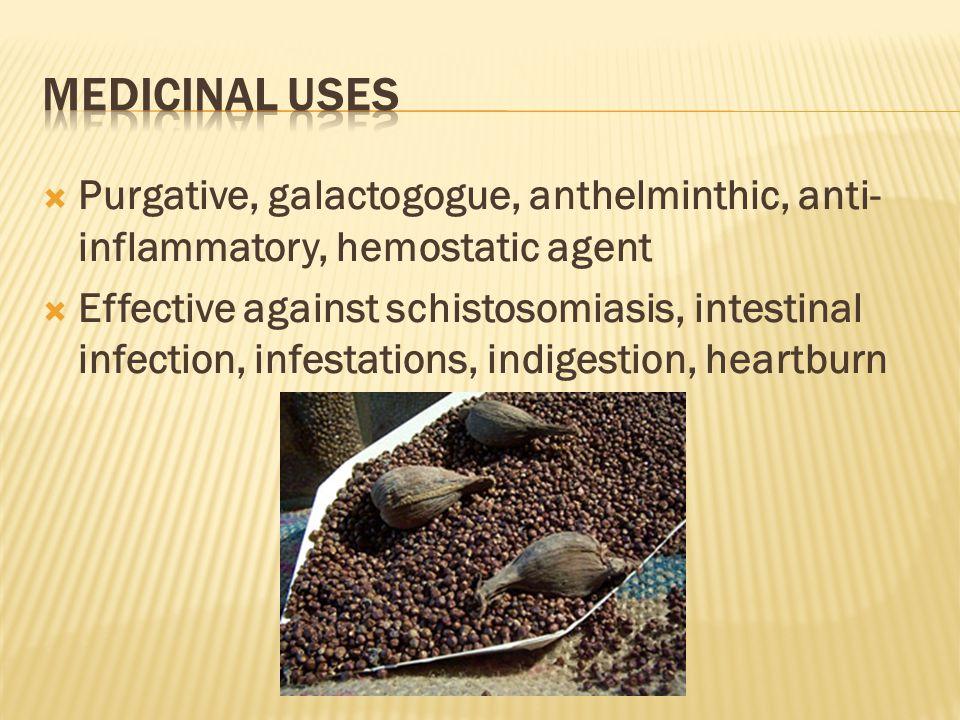  Purgative, galactogogue, anthelminthic, anti- inflammatory, hemostatic agent  Effective against schistosomiasis, intestinal infection, infestations