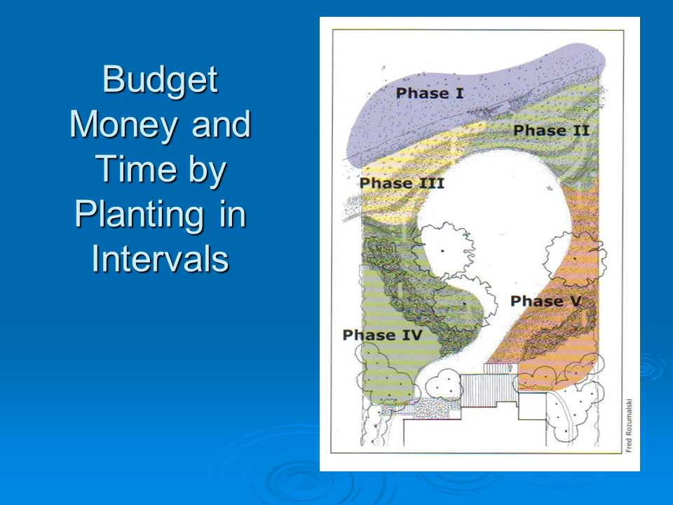 Budget Money and Time by Planting in Intervals