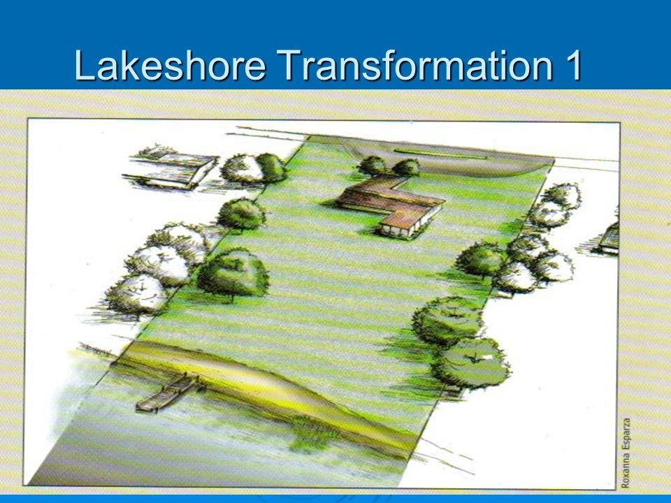 Lakeshore Transformation 1