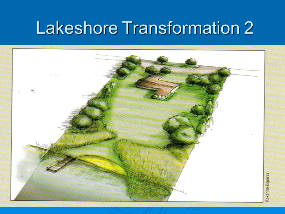 Lakeshore Transformation 2