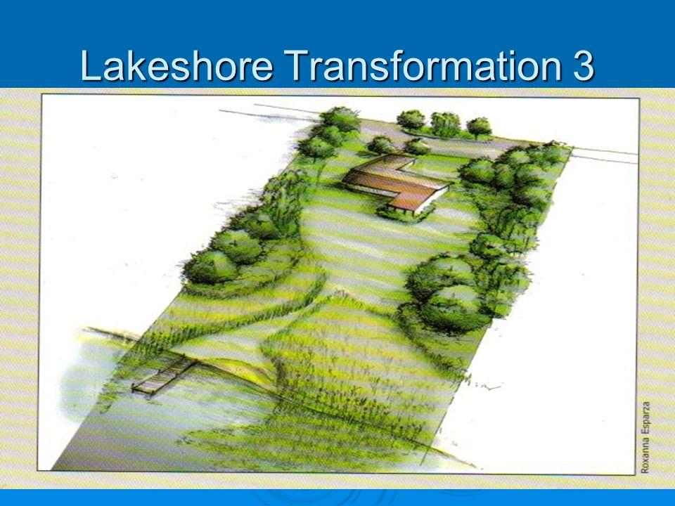 Lakeshore Transformation 3