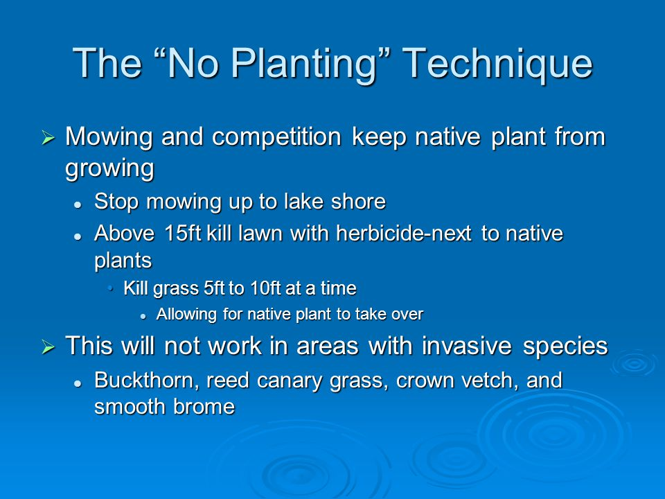 The No Planting Technique  Mowing and competition keep native plant from growing Stop mowing up to lake shore Stop mowing up to lake shore Above 15ft kill lawn with herbicide-next to native plants Above 15ft kill lawn with herbicide-next to native plants Kill grass 5ft to 10ft at a timeKill grass 5ft to 10ft at a time Allowing for native plant to take over Allowing for native plant to take over  This will not work in areas with invasive species Buckthorn, reed canary grass, crown vetch, and smooth brome Buckthorn, reed canary grass, crown vetch, and smooth brome