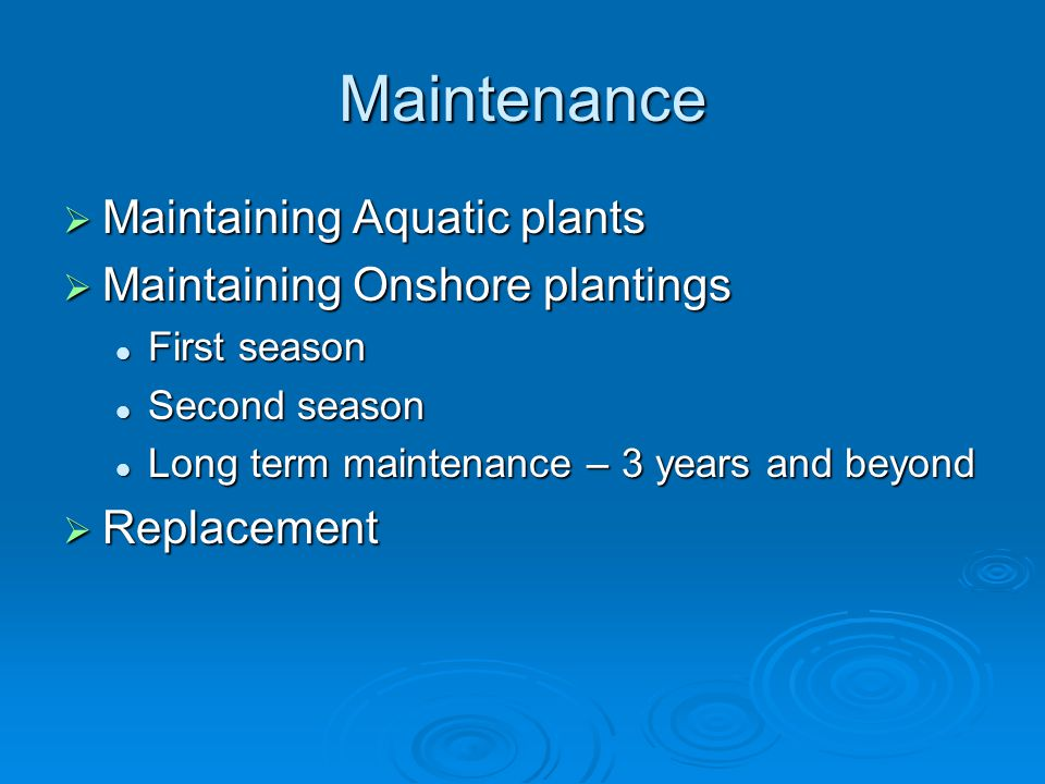 Maintenance  Maintaining Aquatic plants  Maintaining Onshore plantings First season First season Second season Second season Long term maintenance – 3 years and beyond Long term maintenance – 3 years and beyond  Replacement
