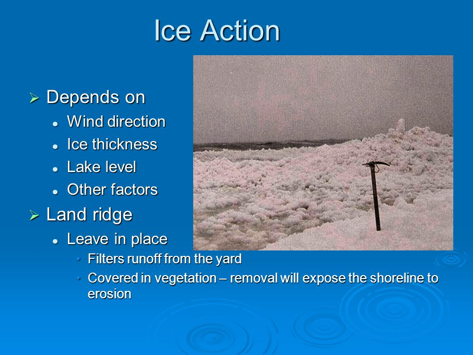 Ice Action  Depends on Wind direction Wind direction Ice thickness Ice thickness Lake level Lake level Other factors Other factors  Land ridge Leave in place Leave in place Filters runoff from the yardFilters runoff from the yard Covered in vegetation – removal will expose the shoreline to erosionCovered in vegetation – removal will expose the shoreline to erosion