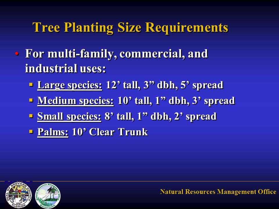 Natural Resources Management Office Tree Planting Size Requirements For multi-family, commercial, and industrial uses:  Large species: 12' tall, 3 dbh, 5' spread  Medium species: 10' tall, 1 dbh, 3' spread  Small species: 8' tall, 1 dbh, 2' spread  Palms: 10' Clear Trunk For multi-family, commercial, and industrial uses:  Large species: 12' tall, 3 dbh, 5' spread  Medium species: 10' tall, 1 dbh, 3' spread  Small species: 8' tall, 1 dbh, 2' spread  Palms: 10' Clear Trunk