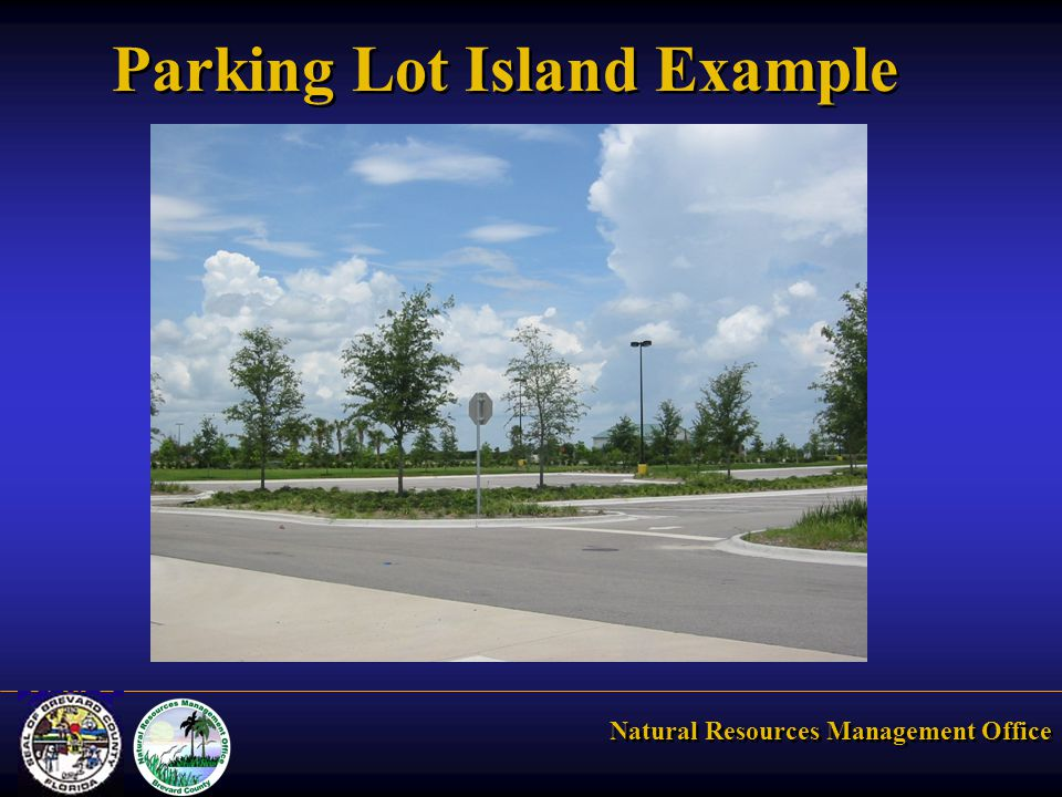 Natural Resources Management Office Parking Lot Island Example