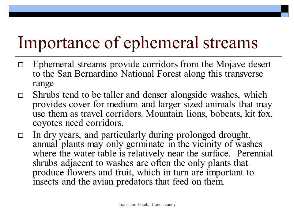 Transition Habitat Conservancy Importance of ephemeral streams  Ephemeral streams provide corridors from the Mojave desert to the San Bernardino Nati