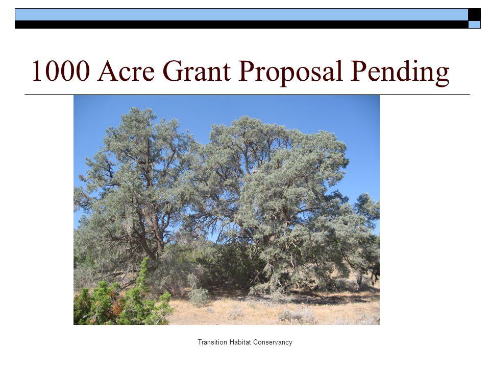 Transition Habitat Conservancy 1000 Acre Grant Proposal Pending