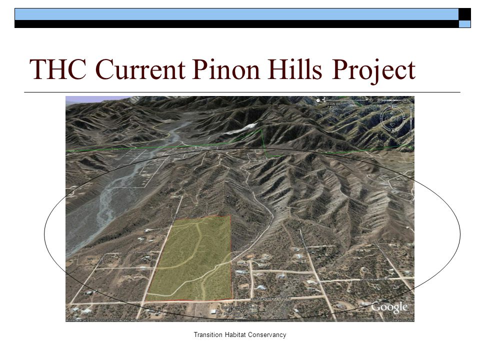 Transition Habitat Conservancy Examples of Resources to Acquire Land  $483 million 08-09 Wildlife Conservation Board  $26 million Proposition 84 River Parkways  $400 million Proposition 84 AB31 Local & Regional Parks (Communities with < 3acres of park/1000 people- we have 2 acres for 35,000 people)  Mitigation opportunities  Foundations  Landowner donations, conservation easement donations