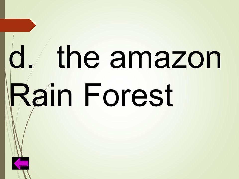 d.the amazon Rain Forest