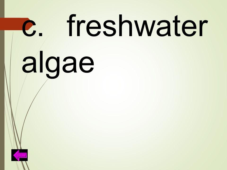 c.freshwater algae