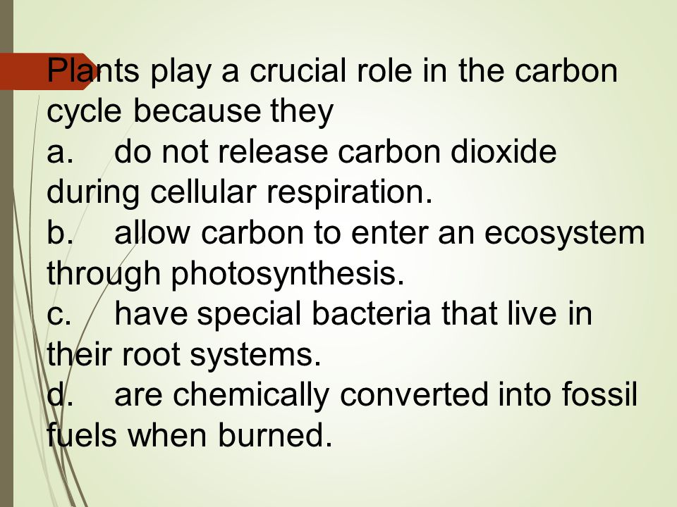 Plants play a crucial role in the carbon cycle because they a.do not release carbon dioxide during cellular respiration. b.allow carbon to enter an ec