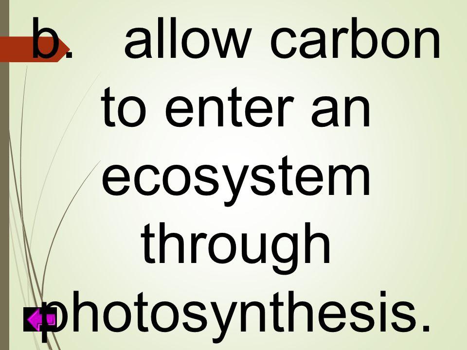 b.allow carbon to enter an ecosystem through photosynthesis.