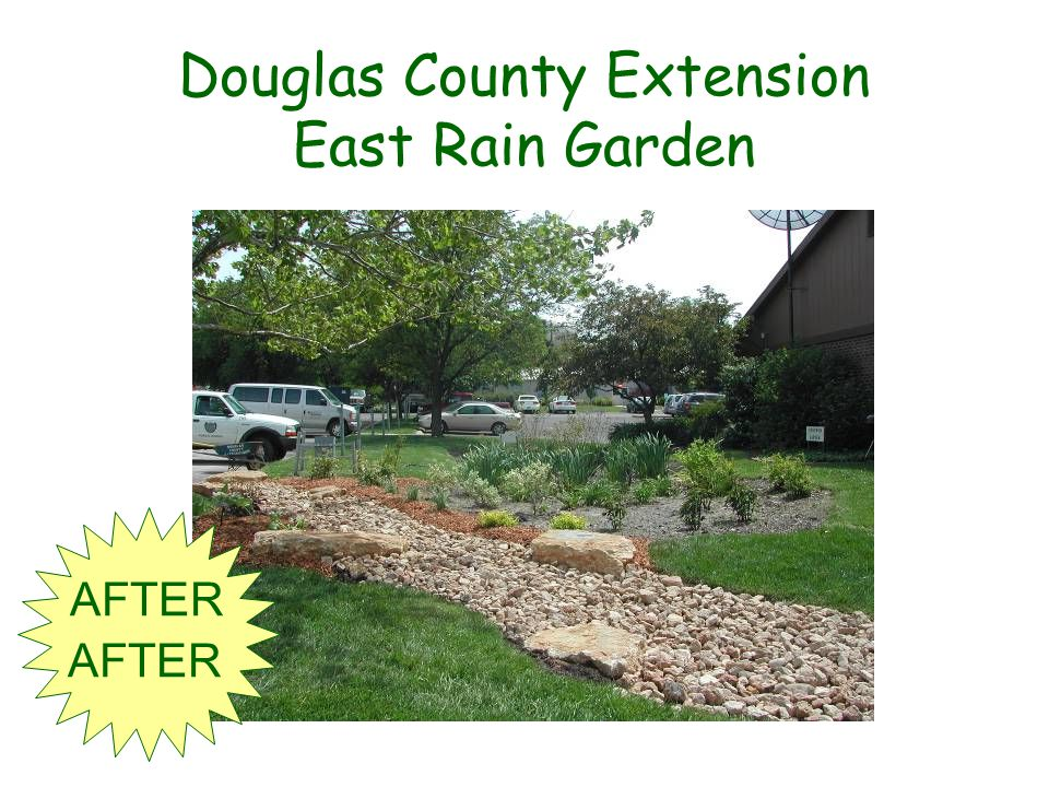 Douglas County Extension East Rain Garden AFTER