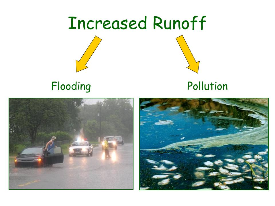 Increased Runoff FloodingPollution
