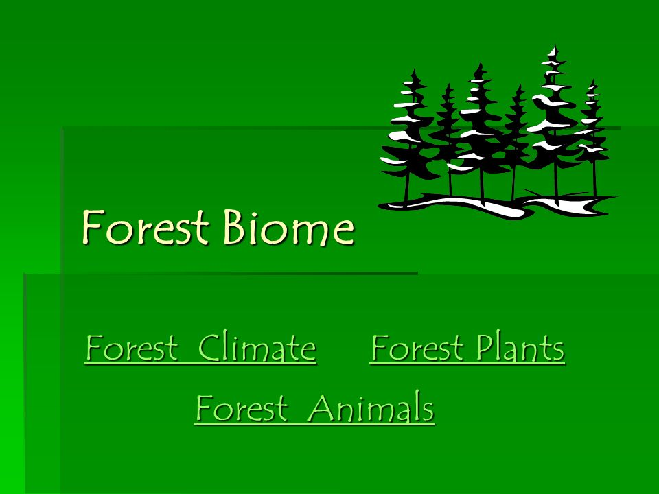 For example: Trees and plants provide food, oxygen and shelter for animals.
