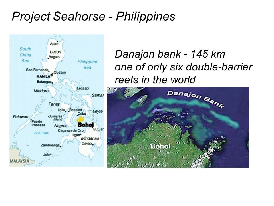 Project Seahorse - Philippines Danajon bank - 145 km one of only six double-barrier reefs in the world