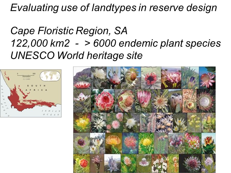Evaluating use of landtypes in reserve design Cape Floristic Region, SA 122,000 km2 102 broad habitat units (untransformed land) vegetation climate geology topography Reserve selection - current reserve selected + minimum set to achieve conservation target (%) by BHU