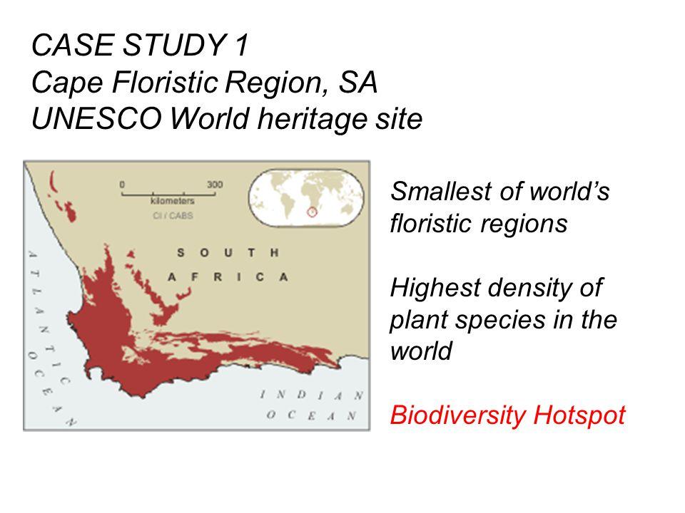 CASE STUDY 1 Cape Floristic Region, SA UNESCO World heritage site Smallest of world's floristic regions Highest density of plant species in the world Biodiversity Hotspot