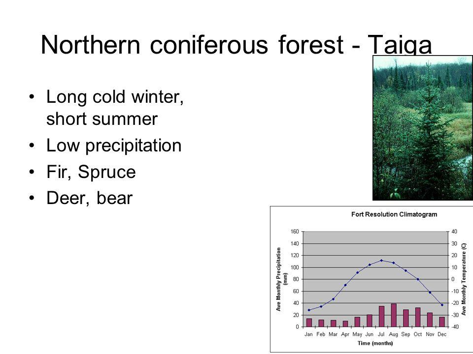 Northern coniferous forest - Taiga Long cold winter, short summer Low precipitation Fir, Spruce Deer, bear
