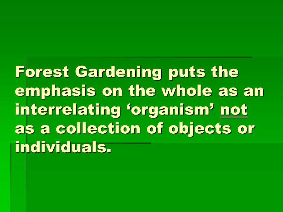 Forest Gardening puts the emphasis on the whole as an interrelating 'organism' not as a collection of objects or individuals.