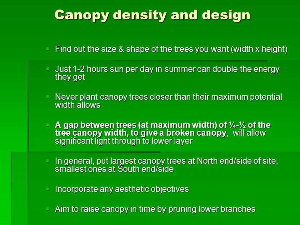 Canopy density and design  Find out the size & shape of the trees you want (width x height)  Just 1-2 hours sun per day in summer can double the energy they get  Never plant canopy trees closer than their maximum potential width allows  A gap between trees (at maximum width) of ¼-½ of the tree canopy width, to give a broken canopy, will allow significant light through to lower layer  In general, put largest canopy trees at North end/side of site, smallest ones at South end/side  Incorporate any aesthetic objectives  Aim to raise canopy in time by pruning lower branches