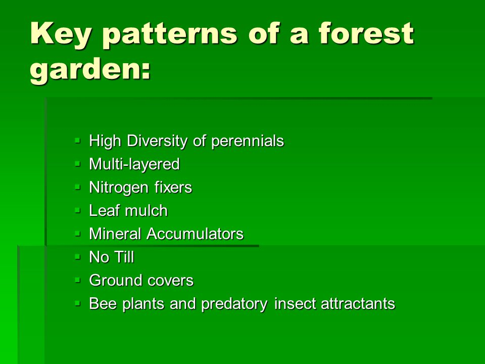 Key patterns of a forest garden:  High Diversity of perennials  Multi-layered  Nitrogen fixers  Leaf mulch  Mineral Accumulators  No Till  Ground covers  Bee plants and predatory insect attractants