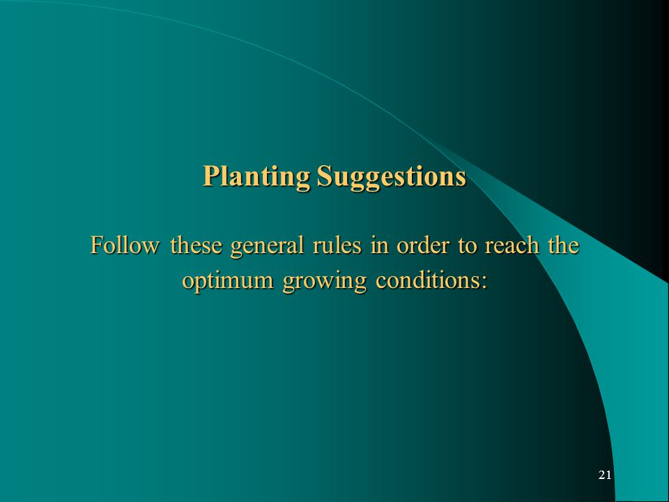 21 Planting Suggestions Follow these general rules in order to reach the optimum growing conditions: