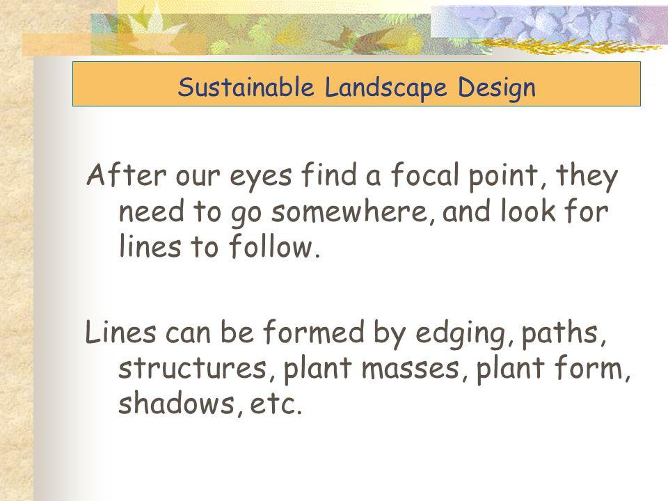 Focal point Sustainable Landscape Design