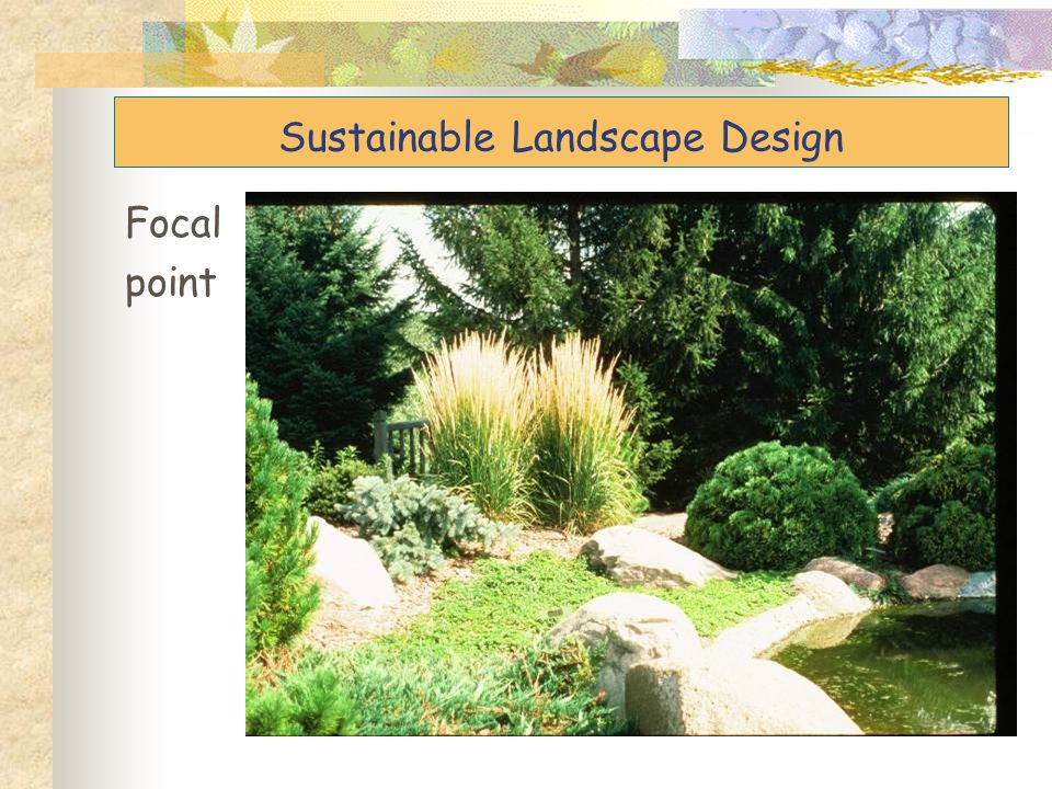 Focal point Sustainable Landscape Design
