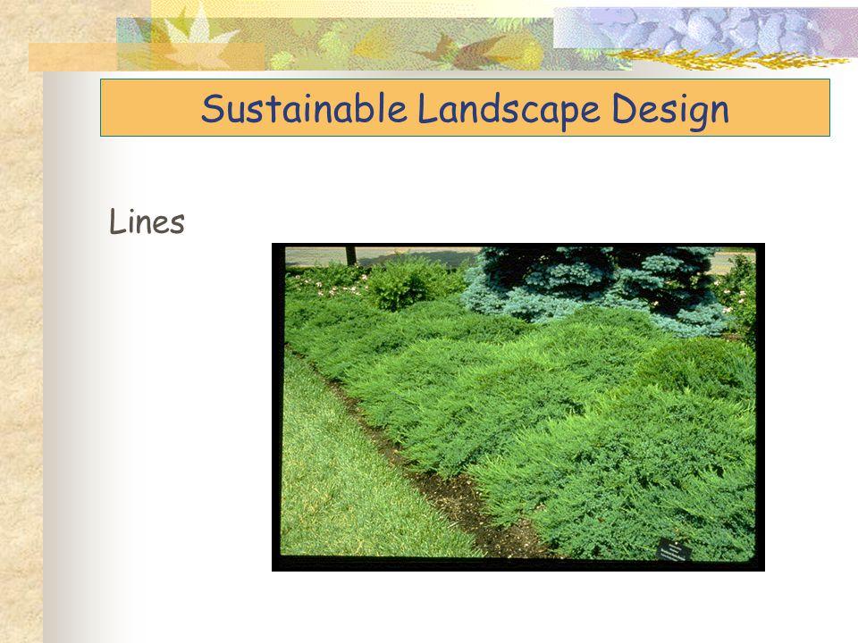 Sustainable Landscape Design Lines
