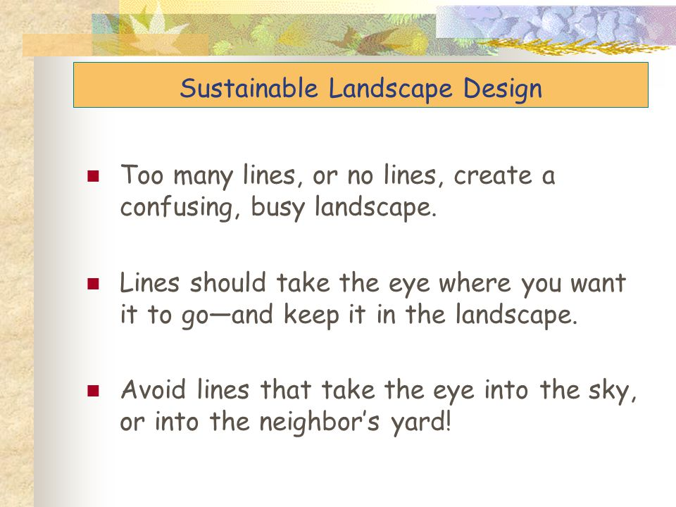 Too many lines, or no lines, create a confusing, busy landscape. Lines should take the eye where you want it to go—and keep it in the landscape. Avoid