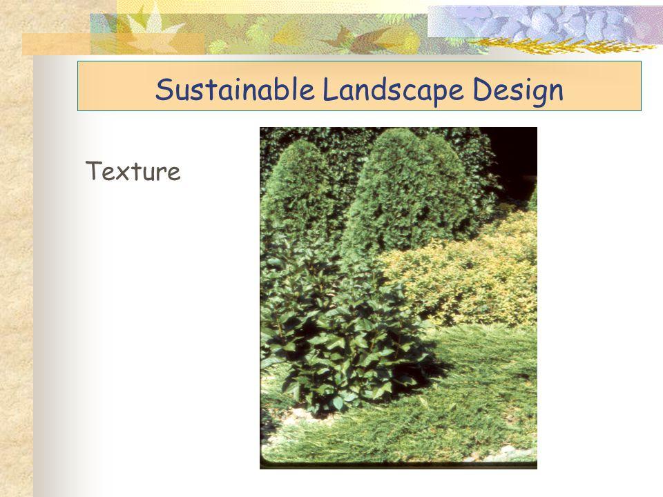 Sustainable Landscape Design Texture