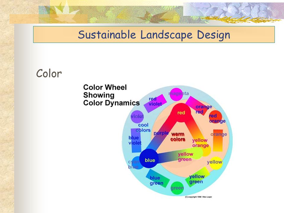 Sustainable Landscape Design Color * Warm colors appear closer, so are good for viewing from a distance.
