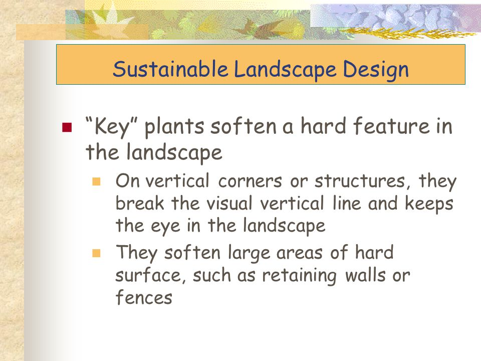 """Key"" plants soften a hard feature in the landscape On vertical corners or structures, they break the visual vertical line and keeps the eye in the la"
