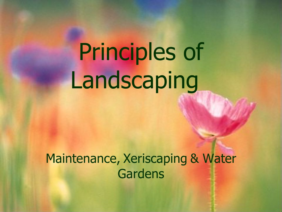 Basic concepts Plant selection Use of mulches Use of low volume irrigation Proper landscape maintenance
