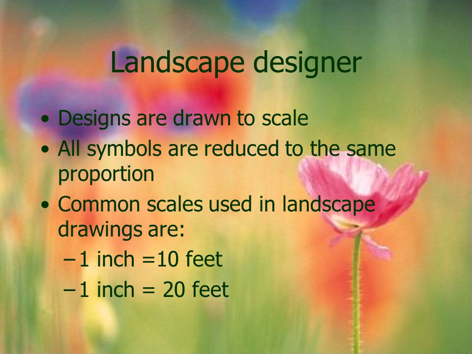 Landscape designer Designs are drawn to scale All symbols are reduced to the same proportion Common scales used in landscape drawings are: –1 inch =10