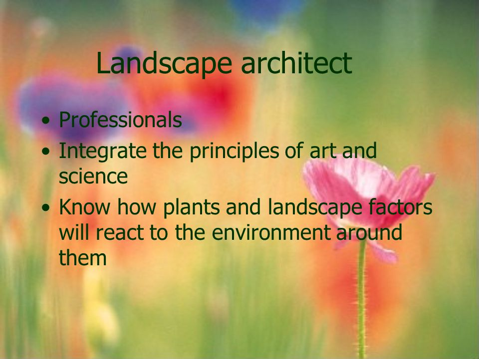Landscape Contractor Must have knowledge of plant materials and proper planting technique Engineering and building skills May build brick patios, or stone or concrete brick retaining walls
