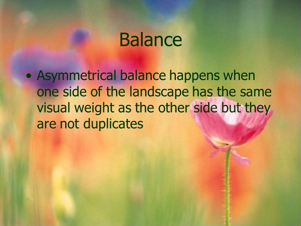 Balance Asymmetrical balance happens when one side of the landscape has the same visual weight as the other side but they are not duplicates