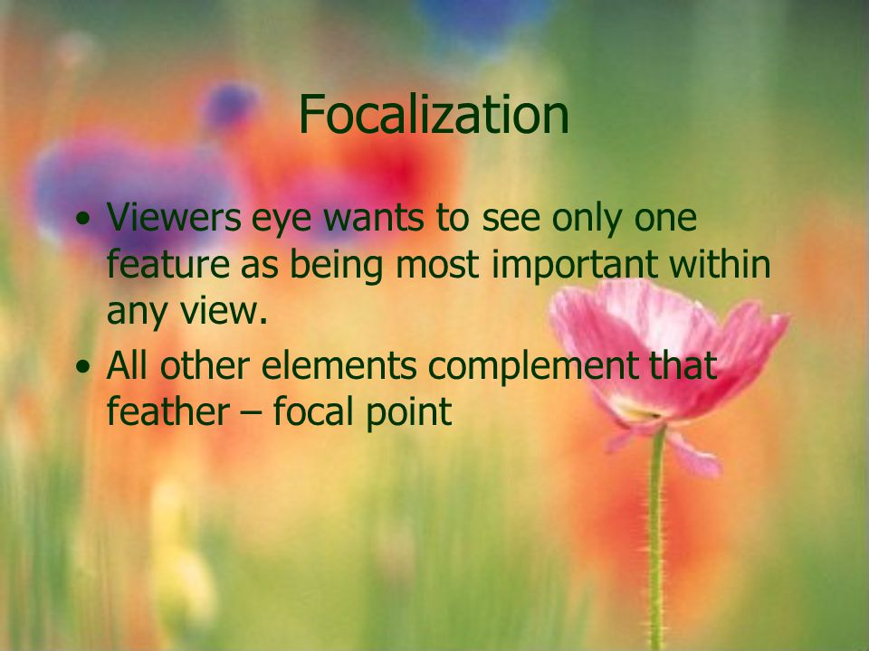 Focalization Viewers eye wants to see only one feature as being most important within any view. All other elements complement that feather – focal poi