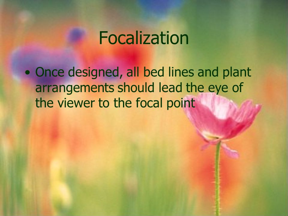 Focalization Once designed, all bed lines and plant arrangements should lead the eye of the viewer to the focal point