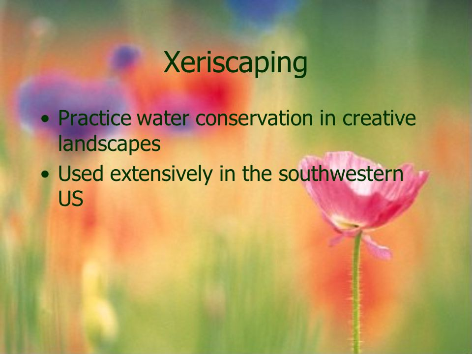 Xeriscaping Practice water conservation in creative landscapes Used extensively in the southwestern US